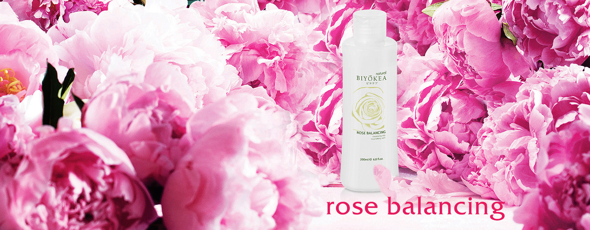 banner rose 1