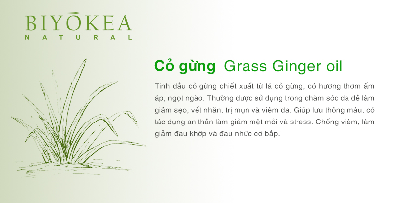 grass ginger co gung