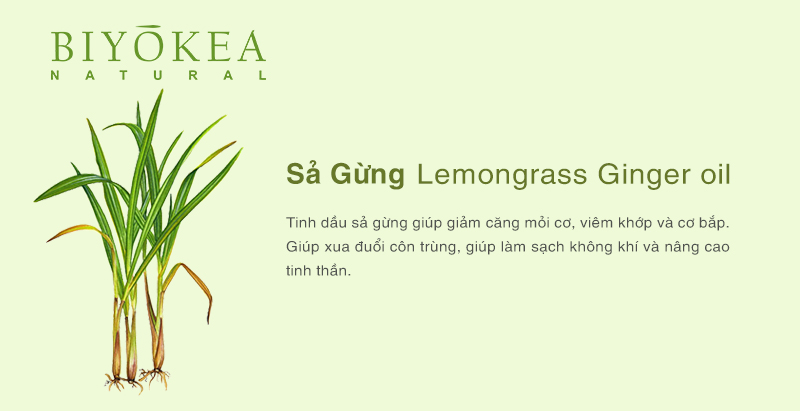 lemongrass ginger sa gung